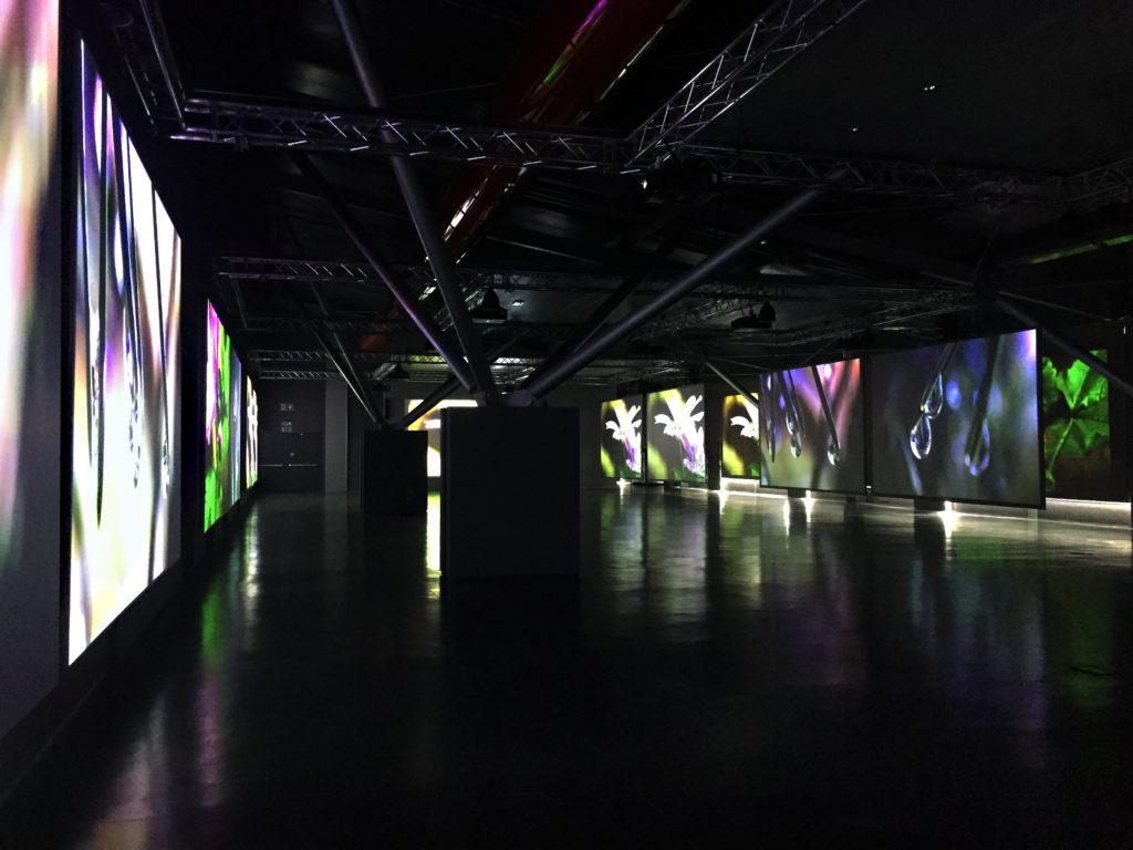 Museo Checco Costa Imola_ OCRA